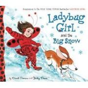 Ladybug Girl and the Big Snow by David Soman