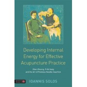 The Developing Internal Energy for Effective Acupuncture Practice by Ioannis Solos