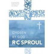 Chosen by God, Paperback