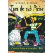 Tara de sub picior - Victor Cilinca