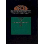 The New Interpreter's Bible Volume IX