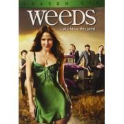 Weeds: Season 6 [Reino Unido] [DVD]