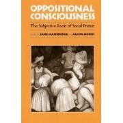 Oppositional Consciousness by Jane J. Mansbridge