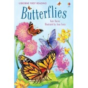 Butterflies by Lecturer in English Literature Kate Davies