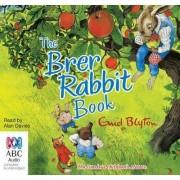 The Brer Rabbit Book by Enid Blyton