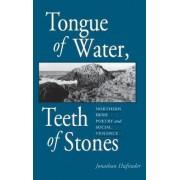 Tongue of Water, Teeth of Stones by Jonathan Hufstader