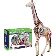 4D Vision 27 Piece Giraffe Anatomy Model Set