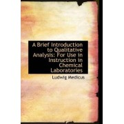 A Brief Introduction to Qualitative Analysis by Ludwig Medicus
