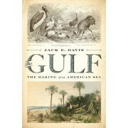The Gulf the Making of an American Sea by Jack E. Davis