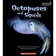 Octopuses and Squids by Mary Jo Rhodes