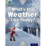 Project X Origins: Yellow Book Band, Oxford Level 3: Weather: What's the Weather Like today? by Claire Llewellyn