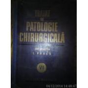 Tratat de patologie chirurgicala Vol VI Patologia chirurgicala a abdomenului