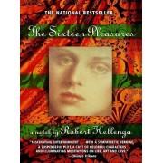 Sixteen Pleasures by Robert Hellenga