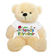 Peach 2 feet Big Teddy Bear wearing a colorful Friends Forever T-shirt