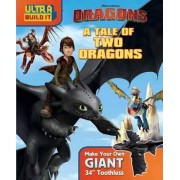 DreamWorks Dragons: A Tale of Two Dragons by Dreamworks How to Train Your Dragon