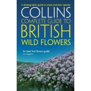 British Wild Flowers by Paul Sterry