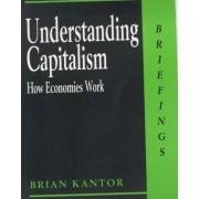 Understanding Capitalism by Brian Kantor