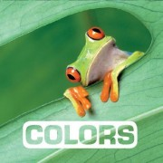 Colors: Picture This by Marie Vendittelli