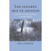 Los Lugares Que Te Asustan (the Places That Scare You) by Pema Chodron