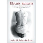 Electric Santeria by Aisha M. Beliso-De Jesus