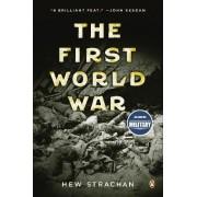 The First World War by Professor of International Relations Hew Strachan
