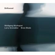 Muzica CD - ECM Records - Muthspiel/Grenadier/Blade: Driftwood