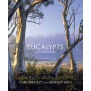 Eucalypts by John Wrigley