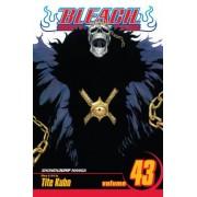 Bleach, Vol. 43 by Tite Kubo