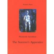 The Sorcerer's Apprentice by Francois Augieras