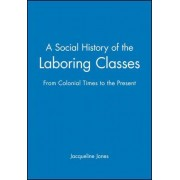 A Social History of Laboring Classes by Jacqueline Jones