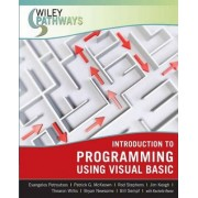 Introduction to Programming Using Visual Basic by Evangelos Petroutsos