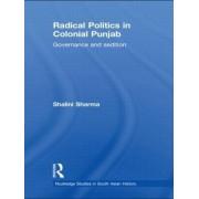 Radical Politics in Colonial Punjab by Shalini Sharma