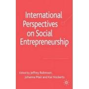 International Perspectives on Social Entrepreneurship by Jeffrey Robinson