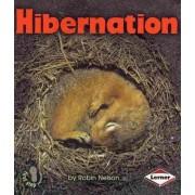 Hibernation by Robin Nelson