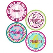 Baby Girl Boutique Chic Monthly Onesie Sticker - Waterproof and Durable - includes 1-12 month stickers