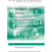Melanie Klein Today: Mainly Theory Volume 1 by Elizabeth Bott Spillius