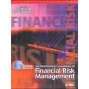 Professional's Handbook of Financial Risk Management by Lev Borodovsky