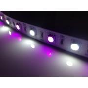 Tape* LED RGB/W 24V Flexible Tape / Strip Light - 5 Metre - 24V
