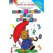 Coloreaza dupa numere 2-5 ani