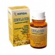 Hofigal Reglacid x 60 capsule