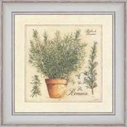 Herbes de Provence, Romarin