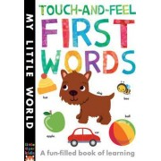 Touch-and-feel First Words by Libby Walden
