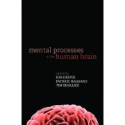 Mental Processes in the Human Brain by Institute of Cognitive Neuroscience Jon Driver
