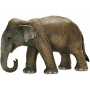 Figurina Schleich Asian Elephant Female
