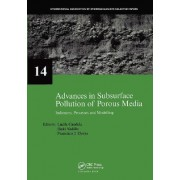 Advances in Subsurface Pollution of Porous Media - Indicators, Processes and Modelling: Volume 14 by Lucila Candela
