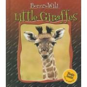 Little Giraffes by Christian Marie
