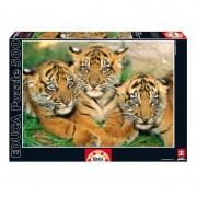 Educa Tigriskölykök puzzle, 500 darabos