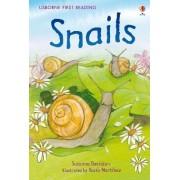 Snails by Susanna Davidson