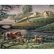 White Mountain Puzzles Natural Curiosity Jigsaw Puzzle (1000 Piece)