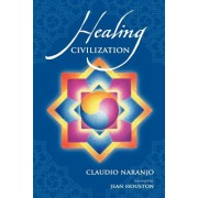 Healing Civilization: Bringing Personal Transformation Into the Societal Realm Through Education and the Integration of the Intra-Psychic Fa